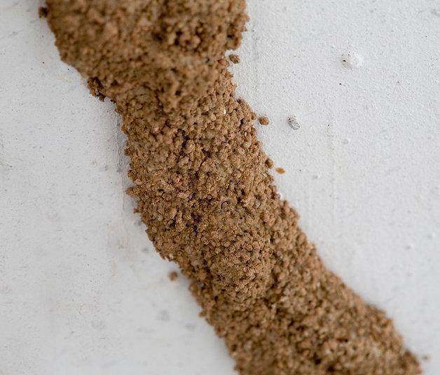 fibra-para-concreto-antiTermita